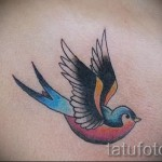 Tattoo Swallows Photo examples 3