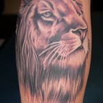 Tattoo auf der Wade lion - Foto Beispiel für die Nummer 20122015 1