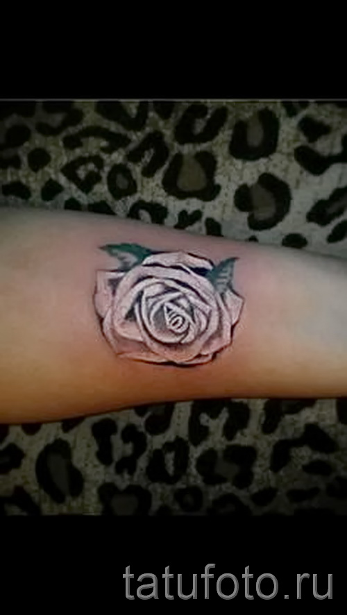 Tattoos white rose - Photos option of number 15122015 1