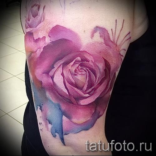 aquarelle Rose Tattoo - option d'image à partir du numéro 15122015 1
