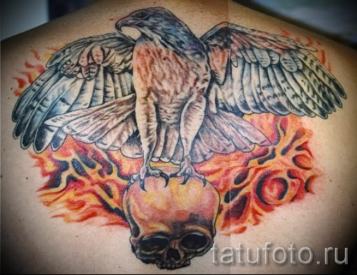hawk tattoo - an example of the photograph of 07122015 2