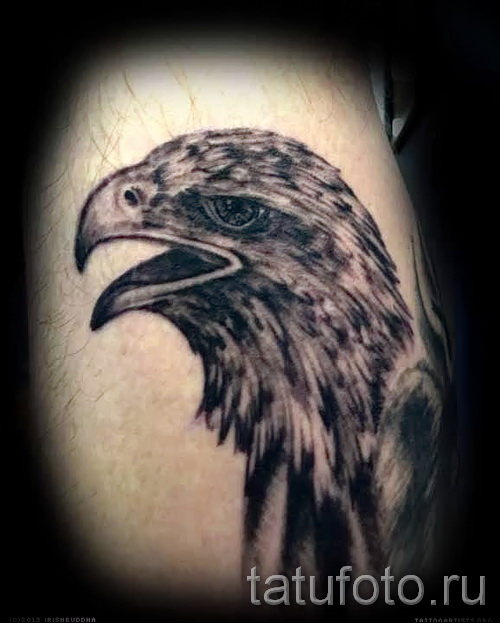 hawk tattoo - an example of the photograph of 07122015 5
