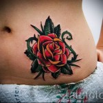 rose tattoo on his stomach - an option of photo number 15122015 2