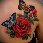 rose tattoo on the back - Picture option from the number 15122015 1