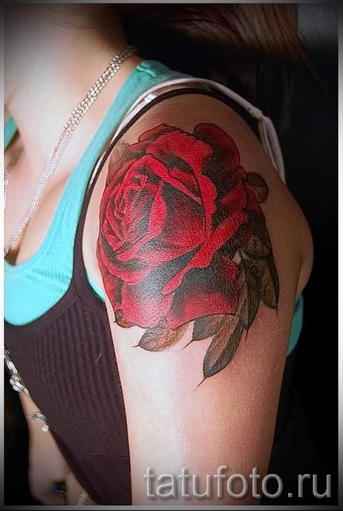 rote Rose Tattoo - Picture-Option aus dem Nummer 15122015 1