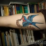 swallow tattoo on his arm - Photo example 2