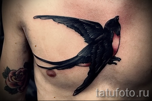 swallow tattoo on his chest - an example of the photo 2