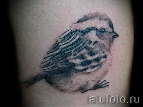 tattoo sparrow - photo 07122015 examples of tattoos 4