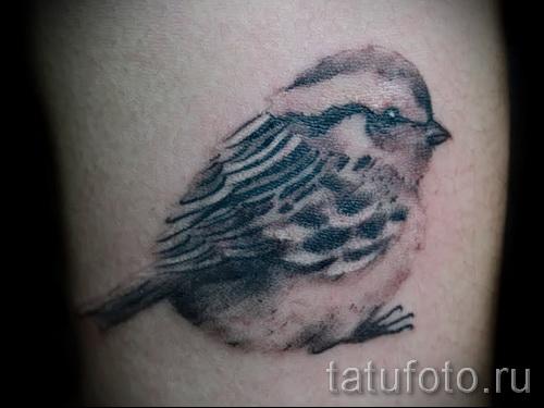 tattoo sparrow - photo 07122015 examples of tattoos 4