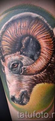 Тату козел – фото готовой татуировки от 10012016 25