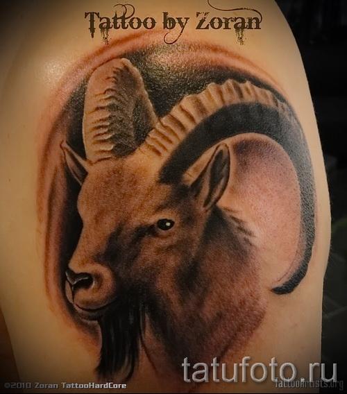 Тату козел - фото готовой татуировки от 10012016 48