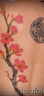 тату вишня цветущая – примеры татуировки на фото от 30012016 3