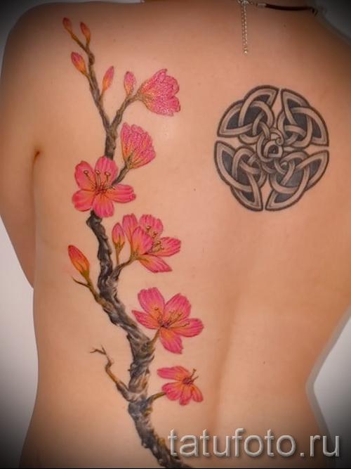 тату вишня цветущая - примеры татуировки на фото от 30012016 3