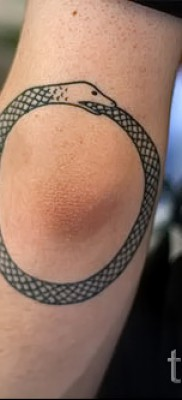 тату уроброс – фото готовой татуировки от 09012016 15