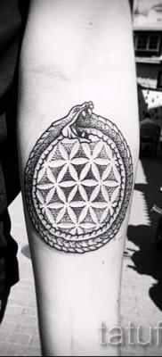 тату уроброс – фото готовой татуировки от 09012016 23