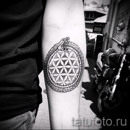тату уроброс - фото готовой татуировки от 09012016 23