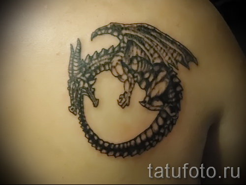 тату уроброс - фото готовой татуировки от 09012016 26