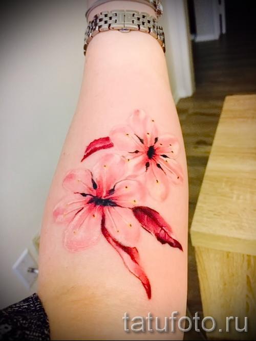 цветы вишни тату - примеры татуировки на фото от 30012016 10