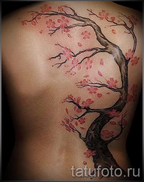 дерево вишни и цветы - фото татуировки