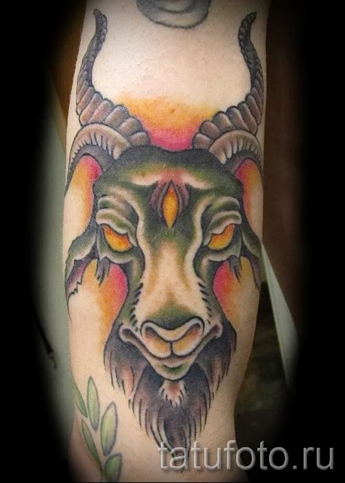 Тату козел - фото готовой татуировки от 10012016 10