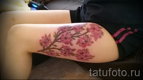 Cherry tattoo on his thigh - examples of tattoos on the photos from 30012016 1