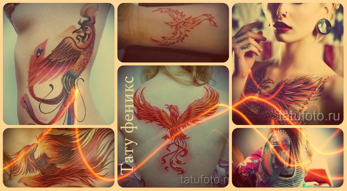 Тату феникс - готовые татуировки на фото