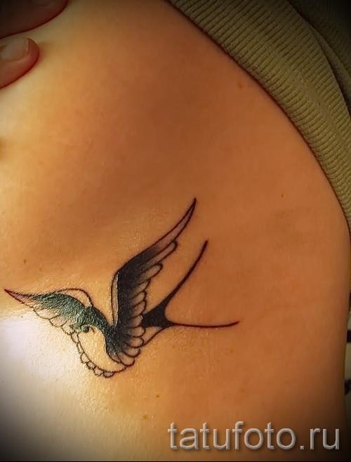 тату ласточка на ребрах - фотография с примером татуировки от 03022016 3
