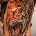 тату лев на ребрах - фотография с примером татуировки от 03022016 1