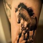 тату на бедре лошадь - примеры готовых тату в фотографиях 01022016 4
