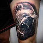 тату на бедре медведь 3