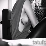 тату перо на ребрах - фотография с примером татуировки от 03022016 5