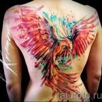 тату феникс акварель - фото готовой татуировки от 11022016 2