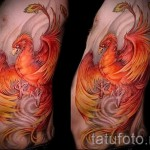 тату феникс в огне - фото готовой татуировки от 11022016 4