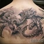 тату феникс и дракон - фото готовой татуировки от 11022016 6