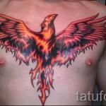 тату феникс на груди - фото готовой татуировки от 11022016 16