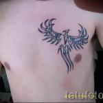 тату феникс на груди - фото готовой татуировки от 11022016 3