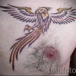 тату феникс на груди - фото готовой татуировки от 11022016 7