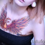 тату феникс на груди - фото готовой татуировки от 11022016 8