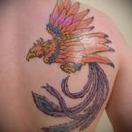 тату феникс на плече - фото готовой татуировки от 11022016 1