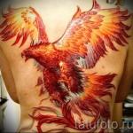 тату феникс на спине - фото готовой татуировки от 11022016 1