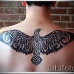 фото татуировки с фениксом между лопаток у парня
