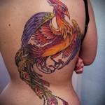 тату феникс на спине - фото готовой татуировки от 11022016 6