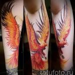 тату феникс рукав - фото готовой татуировки от 11022016 3