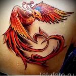 тату феникс 3d - фото готовой татуировки от 11022016 2