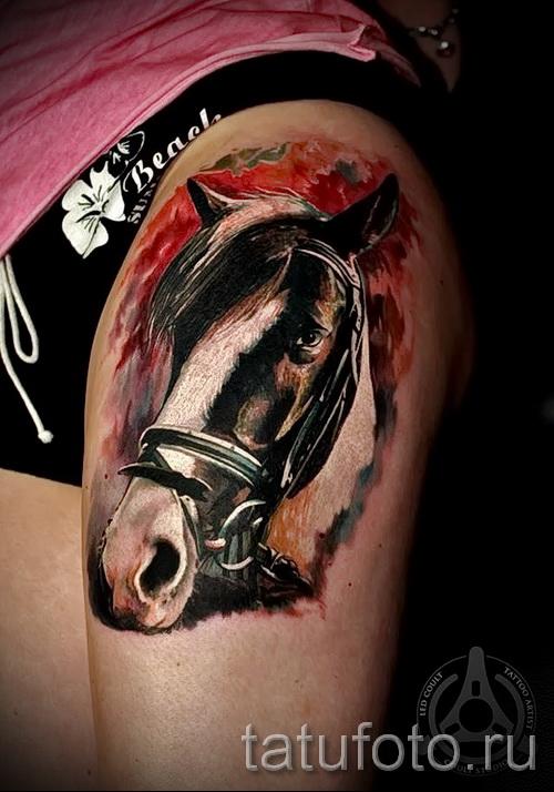 тату на бедре лошадь - примеры готовых тату в фотографиях 01022016 3
