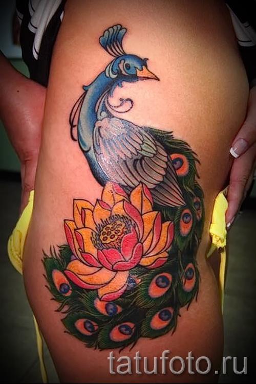 тату павлин на бедре - примеры готовых тату в фотографиях 01022016 3