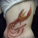 Phönix Tattoo - ein Foto des fertigen Tätowierung auf 11022016 2