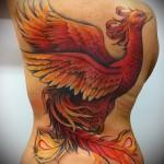 Phoenix Tätowierung Fotos - Fotos des fertigen Tätowierung 11022016 3