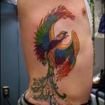 Phoenix Tätowierung auf der Seite - ein Foto des fertigen Tätowierung 11022016 1
