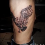 owl tattoo on the ribs - a photo with a tattoo on the example 03022016 1
